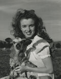 Movie/TV Memorabilia, Marilyn Monroe collection of (37) photographic prints by Andre De Dienes, George Barris and others....