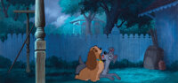 (2) pan production cels placed on an original production background from Lady and the Tramp