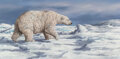 Paintings, Trevor Swanson (American, b. 1968). Polar Bear. Oil on canvas. 12 x 24 inches (30.5 x 61.0 cm). Signed lower right: Tr...