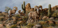 Paintings, Trevor Swanson (American, b. 1968). Bighorn with Cacti. Oil on canvas. 12 x 24 inches (30.5 x 61.0 cm). Signed lower rig...