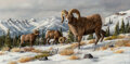 Paintings, Trevor Swanson (American, b. 1968). Bighorn Sheep Grazing in the Snow. Oil on canvas. 12 x 24 inches (30.5 x 61.0 cm). S...