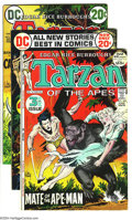 Bronze Age (1970-1979):Miscellaneous, Tarzan Group (DC, 1972-76) Condition: Average FN/VF. This groupconsists of 12 comics: #209, 210, 212, 213, 215, 216, 217, 2...(Total: 12 Comic Books Item)