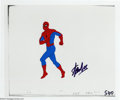 Original Comic Art:Miscellaneous, Spider-Man and Hulk Animation Cels Signed by Stan Lee Original Art(Marvel, circa 1980s). Two cels are featured in this lot;...(Total: 2 items Item)