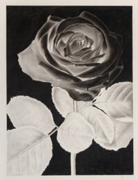 Lucas Price (b. 1980) Untitled, 2015 Carbon print on paper 51 x 39 inches (129.5 x 99.1 cm) (sheet) Signed in pencil
