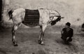 Photographs, Josef Koudelka (Czech, 1938). Romania (Gypsy with Horse), 1968. Offset lithograph print, printed later...