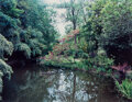 Photographs, Stephen Shore (American, 1947). Group of 4 Photographs of Giverny, France (from Gardens at Giverny portfolio), 1977-1982... (Total: 4 )