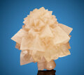 Minerals:Cabinet Specimens, Calcite. Wenshan. Yunnan. China. ... (Total: 2 Items)