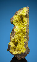Minerals:Cabinet Specimens, Pyromorphite. Daoping Mine (Tangping Mine). Gongcheng Co., Guilin, Guangxi. China. ... (Total: 2 Items)