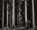 Ansel Adams (American, 1902-1984) Portfolio Four: What Majestic Word, In Memory of Russell Varian (complete portfolio wi...