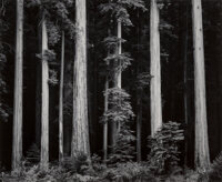Ansel Adams (American, 1902-1984) Portfolio Four: What Majestic Word, In Memory of Russell Varian (complete por