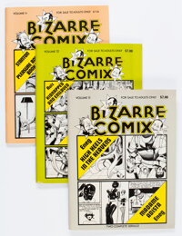 Underground Comix Magazine Format Bronze Age Group of 10 (Various Publishers, 1970s) Condition: Average FN.... (Total: 1...