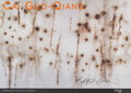 Prints & Multiples, Cai Guo-Qiang (b. 1957). A Explosion Event: Light Cycle over Central Park, exhibition poster, 2005. Of...