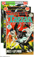 Bronze Age (1970-1979):Miscellaneous, Tarzan Group (DC, 1972-74) Condition: Average VF. This lot consistsof issues #209, 215, 218, 219, 221, 222, 224, 226, and 2... (Total:9 Comic Books Item)