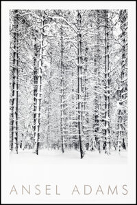 """Ansel Adams (Little, Brown & Co.,1997). Rolled, Very Fine-. Poster (24"""" X 36"""") """"Pine Forest in the Sn..."""