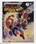 Silver Age (1956-1969):Superhero, Spectacular Spider-Man #2 (Marvel, 1968) Condition: NM. John Romita Sr. painted cover featuring Spider-Man and the Green Gob...