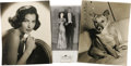 "Movie/TV Memorabilia:Photos, Ava Gardner Assorted Photos. Three large format photos from Ava'scollection. Included is a 10"" x 13"" portrait of Rags, the ..."