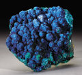 Minerals:Cabinet Specimens, BRILLIANT BLUE CORNETITE. ...