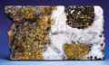 Meteorites:Palasites, PARTIAL SLICE OF A STUNNING NEW PALLASITE METEORITE . ...