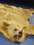 Zoology:Taxidermy, RARE KERMODE BEARSKIN RUG. ...