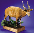 Zoology:Taxidermy, BONGO FULL-BODY MOUNT. ...
