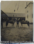 Photography:Tintypes, TINTYPE OF A MAN HOLDING TWO HORSES. Interesting c. 1890 image ...