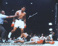 "Miscellaneous, HUGE ALI SIGNED COLOR FIGHT PHOTO. 20 x 16"" actual photo, boldl..."