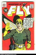 Silver Age (1956-1969):Miscellaneous, Misc. Comics Group (Misc., 1959-66) Condition: Average VG. This lotcontains Adventures of the Fly #3, Fly Man #36, Forbidde... (Total:7 Comic Books Item)