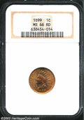 Indian Cents: , 1899 1C MS66 Red NGC. Tan red surfaces with light cherry ...