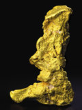 Minerals:Golds, THE LARGEST GOLD NUGGET FROM THE WESTERN HEMISPHERE - BOOT OFCORTEZ. ...