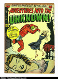 Golden Age (1938-1955):Horror, Adventures Into the Unknown #16 (ACG, 1951) Condition: VF-.Beautiful looking, high-grade book with some tanning that brings...