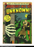 Golden Age (1938-1955):Horror, Adventures Into the Unknown #19 (ACG, 1951) Condition: FN. Coolpre-code horror. Overstreet 2003 FN 6.0 value = $84. From...