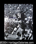 Autographs, Dick Butkus Signed 16 x 20 Photo