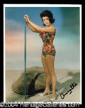 Autographs, Annette Funicello Signed 8 x 10 Photograph