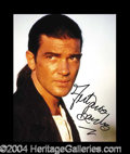 Autographs, Antonio Banderas In-Person Signed Photo