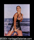 Autographs, Daisy Fuentes Sexy In-Person Signed Photo