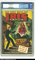 Golden Age (1938-1955):Superhero, The Invincible Ibis #1 (Fawcett, 1943) CGC FN+ 6.5 Off-white to white pages. Origin of Ibis and Mac Raboy cover. Overstreet ...