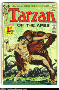 Golden Age (1938-1955):Adventure, Tarzan Lot (DC, 1970s) Condition: average VF/NM. Issues #207 (first DC issue & a GIANT), 211-214, 216, 217, 223 and 228. Her... (Total: 9 Comic Books Item)