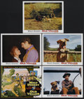 "Movie Posters:Adventure, Old Yeller/The Incredible Journey Combo (Buena Vista, R-1974).Lobby Card Set of 10 (11"" X 14""). Family Adventure. Starring ...(Total: 10 Items)"