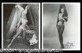 Autographs, Lili St. Cyr Sexy Signed Photo Lot