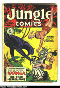 Golden Age (1938-1955):Adventure, Jungle Comics Group (Fiction House, 1949). Issues #111 and #112 make up this group. Both are in GD, and feature Matt Baker, ... (Total: 2 Item)