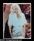 Autographs, Mamie Van Doren Sexy Signed Photo
