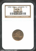 1858 1C Small Letters MS64 NGC. Well struck although not quite full on the eagle's tail feathers. A light coating of dov...