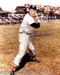 Autographs, Ted Williams Signed 16 x 20 Photograph
