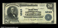 National Bank Notes:Tennessee, Columbia, TN - $20 1902 Plain Back Fr. 655 The Maury NB...