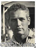 Autographs, Paul Newman Vintage Signed Photo