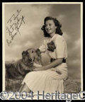 Autographs, Barbara Stanwyck Beautiful Signed Vintage Photo