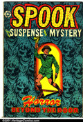 Golden Age (1938-1955):Horror, Spook #25 (Star Publications, 1953). Condition: VG+....