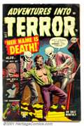 Golden Age (1938-1955):Horror, Adventures Into Terror #16 (Atlas, 1953). Condition: FN-. ...
