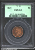 Proof Indian Cents: , 1876 1C, RD