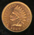 Proof Indian Cents: , 1889 1C, RD